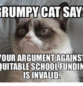 25+ Best Memes About Snowshoe Cat Grumpy | Snowshoe Cat ...