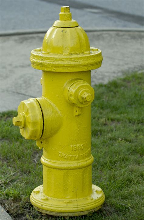 yellow fire hydrant photober    images