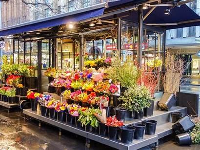 Flower Website Shopping Garden Commerce Setup Templates