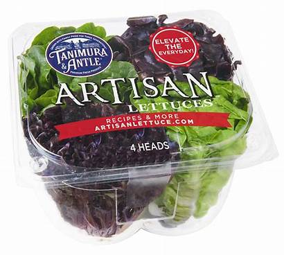 Artisan Lettuce Sweet Romaine Broccoli