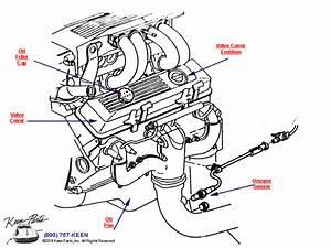 2001 Corvette Engine Diagram 25795 Netsonda Es