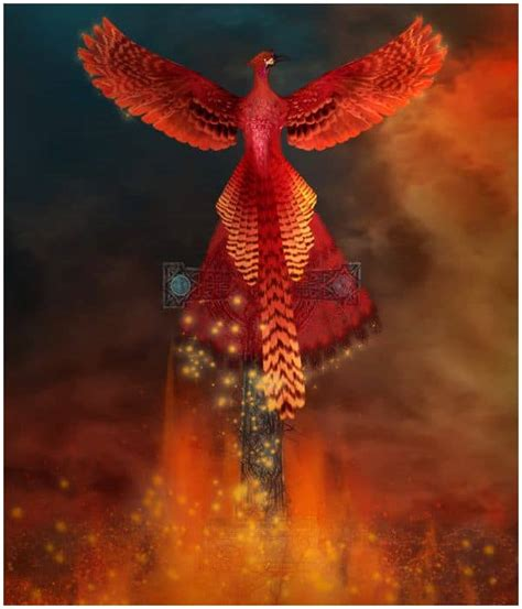 Spiritual Meaning of The Phoenix Bird + Legends & Myths - Insight state