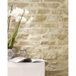 Papier Peint De Parement Blanc by Plaquette De Parement B 233 Ton Bronze 4 Vall 233 Es Leroy Merlin