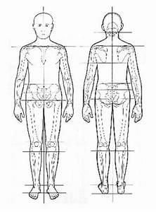 Photos  Full Body Assessment Diagram