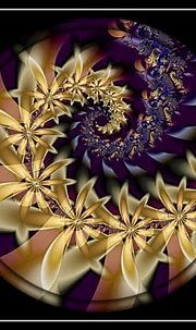 Daisy Flowers Spiral by *kayandjay100 | Flower of life ...