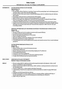 validation consultant sample resume graphic web designer With netsuite consultant resume