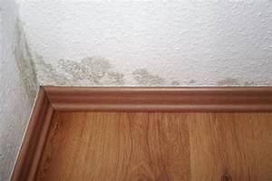 Schimmelbefall auf dispersionsfarbe was konnen sie tun for Balkon teppich mit tapete gegen schimmel