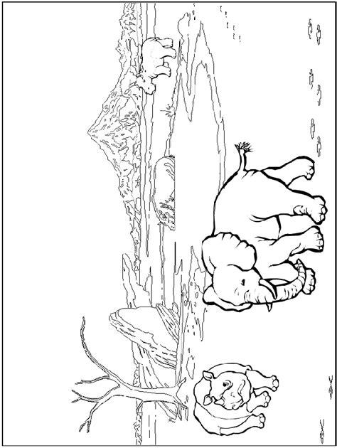 safari coloring pages    print