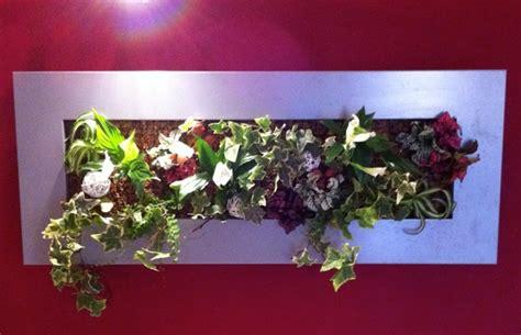 faire un cadre vegetal tout sur la sphaigne sphaigne du chili