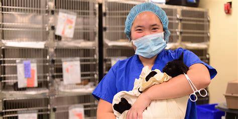 penn vet shelter medicine