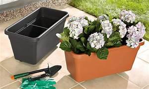 Jardiniere Sur Roulette : jardini re sur roulettes lidl france archive des offres promotionnelles ~ Farleysfitness.com Idées de Décoration