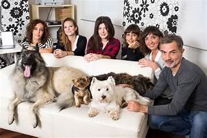 Hotel Pour Chien : hotel pour chien bruxelles ~ Nature-et-papiers.com Idées de Décoration