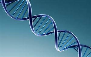 Court Gives OK to Biotech Company Patenting Human DNA ...