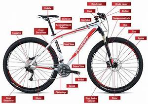 Mountain Bikes - What Are The Different Types