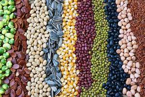 Importance Of Genetic Diversity In Agriculture