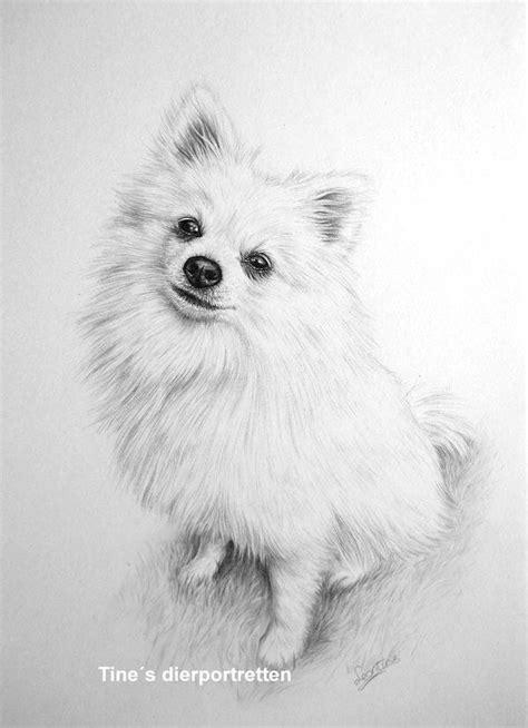 pin  sheri venters  paintings  images animal