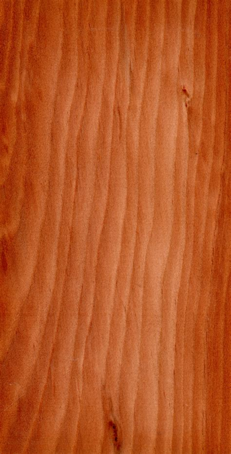 what type of wood is best for kitchen cabinets file wood larix decidua jpg wikimedia commons 2277