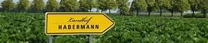 Matratzen Concord Braunschweig : unsere erdbeeren verkaufsst nde in braunschweig ~ Watch28wear.com Haus und Dekorationen