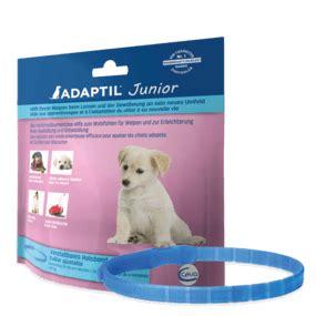 adaptil junior halsband fuer entspannte welpen