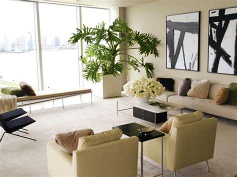 plante verte chambre la plante verte d 39 intérieur