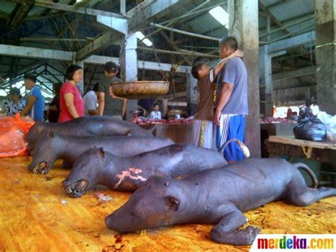 Tips Kehamilan 8 Minggu Foto Menengok Pasar Makanan Ekstrem Tomohon Merdeka Com