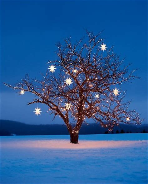 star christmas tree lights tree with lights em for marvelous