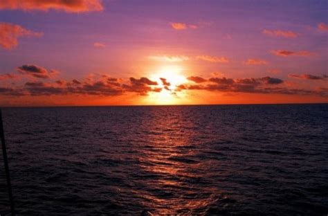 Fishing Boat Charters Cairns by Cairns Charter Boats Private Charter Sunset Cruise
