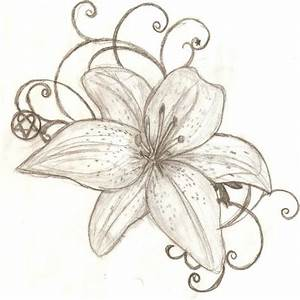 Lily Drawing at GetDrawings | Free download