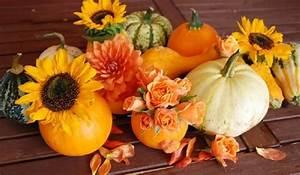 Kostenlose Bilder Herbst : herbst gb pics herbst g stebuch bilder jappy bilder facebook ~ Yasmunasinghe.com Haus und Dekorationen