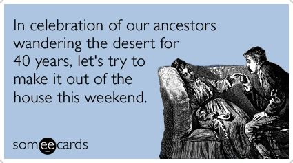 Funny Passover Memes - passover forty years desert lazy jewish funny ecard passover ecard