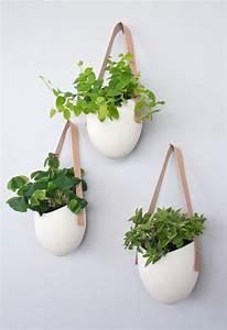 Pot Pour Plante Intérieur : formidable pot mural pour plante interieur 1 pots de confitures accroch233s au mur pour ~ Melissatoandfro.com Idées de Décoration
