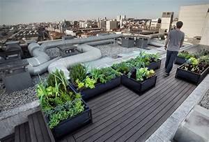 Un Jardin Sur Le Toit : jardin sur un toit arkko ~ Preciouscoupons.com Idées de Décoration