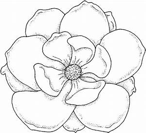 Coloring Pages: Flower Coloring Pages