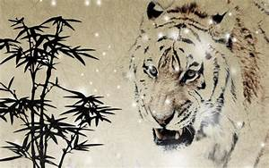 HD Angry Tiger Wallpaper   Download Free - 118387