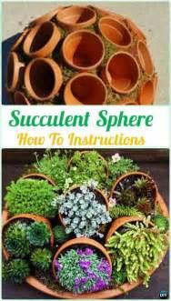 best 25 succulent garden diy indoor ideas on
