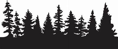 Forest Silhouette Edge