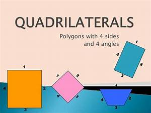 Understanding Quadrilaterals Worksheet For Class 8