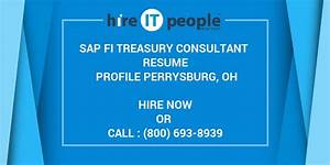 Resume With Professional Summary Sap Fi Treasury Consultant Resume Profile Perrysburg Oh