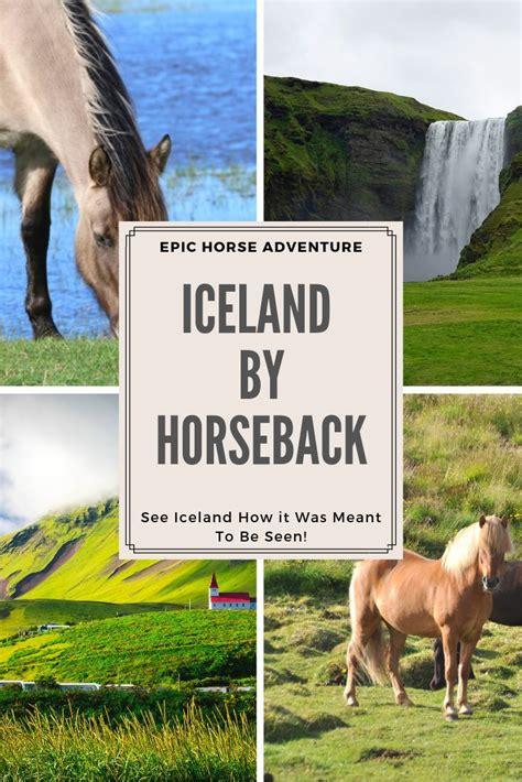 horse horseback iceland riding go