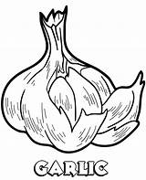 Garlic Coloring Print Children Worksheet sketch template
