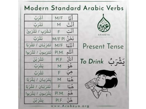 Learn Modern Standard Arabic (msa) With Arabeya