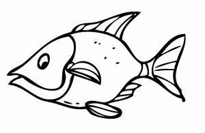 Sternzeichen Fisch Und Krebs : kostenlose malvorlage sommer gef hrlicher fisch zum ausmalen ~ Frokenaadalensverden.com Haus und Dekorationen