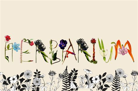 Made Goods Furniture by Herbarium Display Fonts On Creative Market