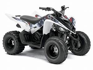 2011 Yamaha Raptor 90 Atv Pictures  Specifications