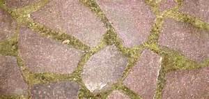 Betonplatten Verlegen Auf Erde : polygonalplatten verlegen verfugen anleitung splitt splittbett kies kiesbett ~ Whattoseeinmadrid.com Haus und Dekorationen