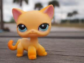 lps cat 1000 images about littlest pet shop on