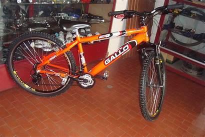 Gallo Bike Rebaixada Laranja Neon Biker Lima