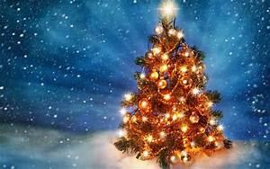 Weihnachten In Hd : schonen weihnachtsbaum mit lichtern hd weihnachten hintergrund bild 1 vfb 1999 bischofswerda ~ Eleganceandgraceweddings.com Haus und Dekorationen