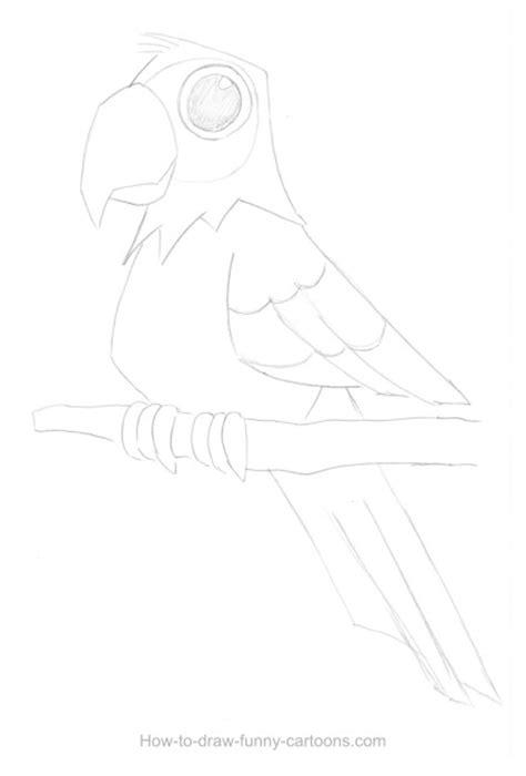 parrot drawing sketching vector