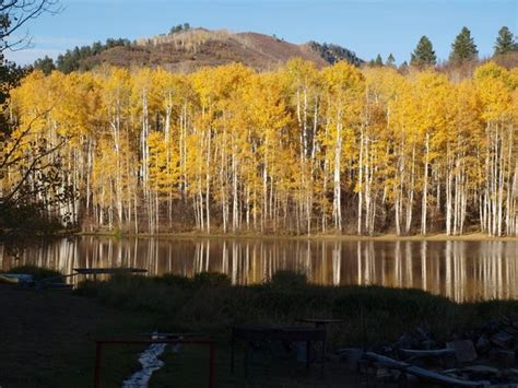 rockies colors coulter lake guest ranch updated 2018 reviews rifle co